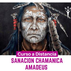Sanación Chamánica Guaraní - AMADEUS