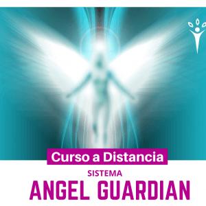 Sistema Angel Guardián