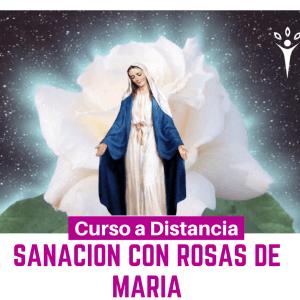 Sanación con Rosas de María