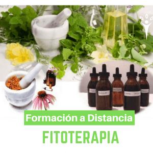 Formación en Fitoterapia (A distancia)
